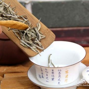 福鼎白茶白毫银针是什么茶?