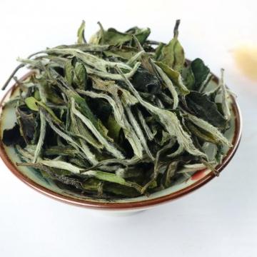 福鼎白茶:不是贵得好,只有合适才是最好的!