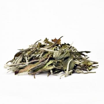 白茶是中国的特产!白茶的工艺过程有哪些?