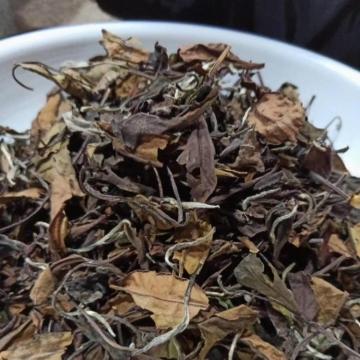 什么样的白茶适合收藏