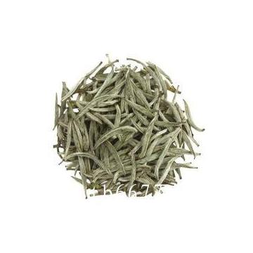 传统白茶与新工艺白茶之间的区别在哪里呢?