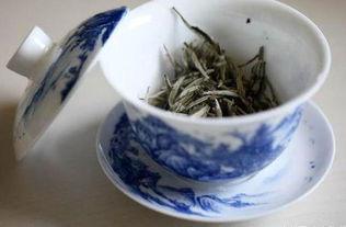 哪里可以买到正宗的福鼎白茶