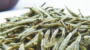 2015年福鼎老白茶的价格