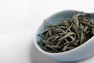 云南白茶与福鼎白茶对比两者各有不同