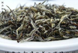 寿眉和福鼎白茶有什么不同