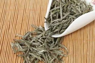 福鼎白茶怎么萎凋才是最好的