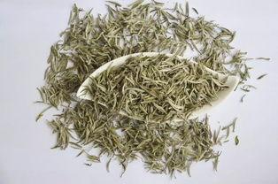 煮茶七问,冬天到了,你开始煮老白茶了吗?