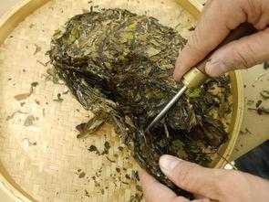 """响亮的口号、便宜的价格,这些""""老白茶""""为何让茶友们趋之若鹜?"""