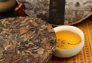 新白茶性寒凉,老白茶才养生?入秋如何喝茶,听听村姑陈怎么说?