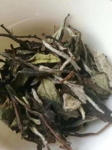 """沸水是""""照妖镜"""",绿茶、红茶、白茶、岩茶品质好不好,一泡便知"""