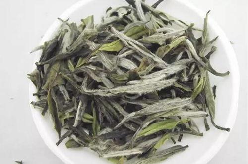 白茶、普洱茶大牌子的一定好吗?