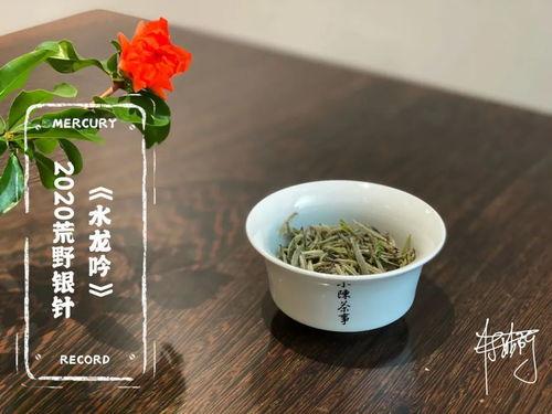如何使用盖碗,泡出一杯好喝的白茶?