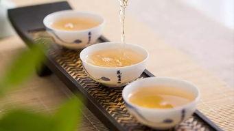 秋白茶提早上市?当心买到含水量不合格的粗制茶!