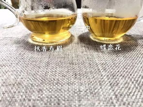 一年四季,白茶适合怎么喝?