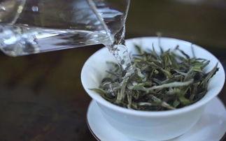 飘逸杯泡白茶,为什么没有用盖碗好喝?