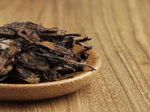 老白茶中的枣香,从何而来?