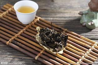 怎么辨别白茶含水量是否达标?简单四招,入门小白也能轻松学会