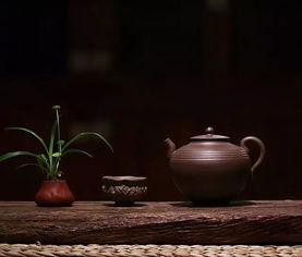 老白茶煮着喝为什么好?了解一下!