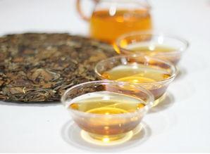 喝了这么多年春白茶,白毫银针、白牡丹、寿眉,谁更值得喝?