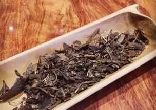 新白茶和老白茶到底有什么不同?这三点内容,最基础!
