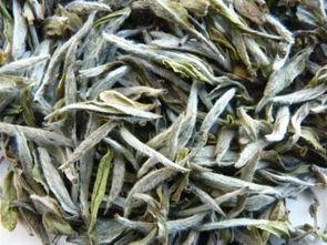 福鼎白茶适合用什么泥料的紫砂壶冲泡