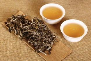 安吉白茶新茶与老茶的区别