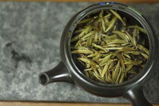 买白茶,千万别忽略了含水量!