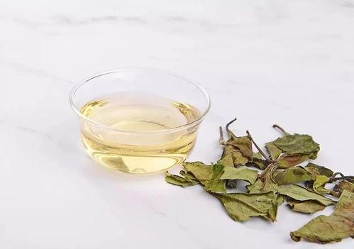 老白茶要怎么冲泡才好喝?