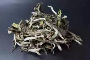 紫砂壶泡白茶会不会吸附异味?