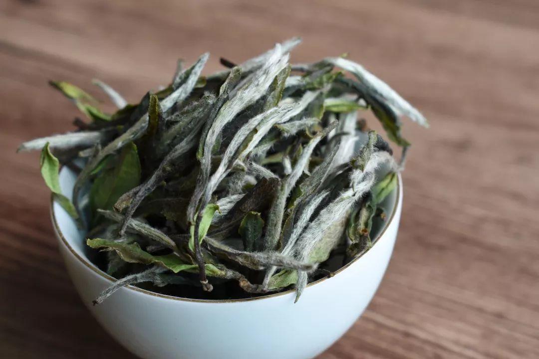 秋白茶家族曝光,秋茶只有秋寿眉吗,还有没有白牡丹和白毫银针?