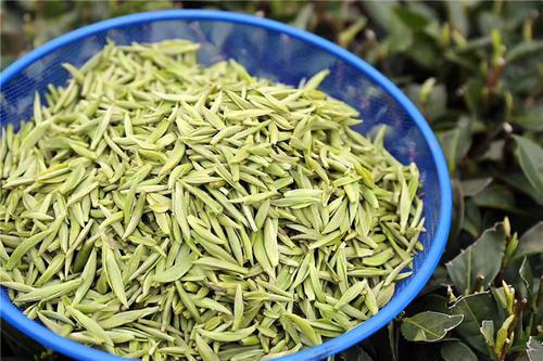 福鼎白茶品牌排行榜