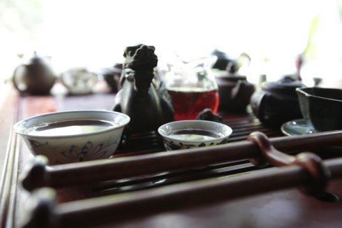 夏日喝茶解闷,不妨多感受白茶的鲜爽!