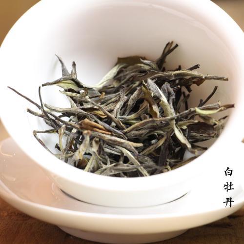 新茶之上,老茶未满,兼新白茶老白茶之美,是陈白茶最真实的写照