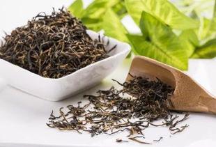 白茶的五大种类的简要概括!