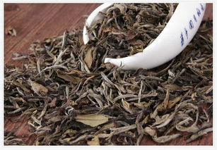 寿眉白茶的三个特征,你都知道吗?