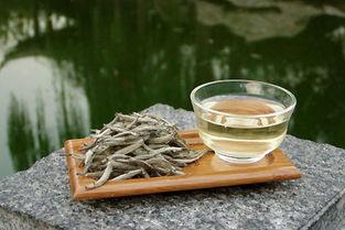 不能喝白茶的,为什么不能喝呢?