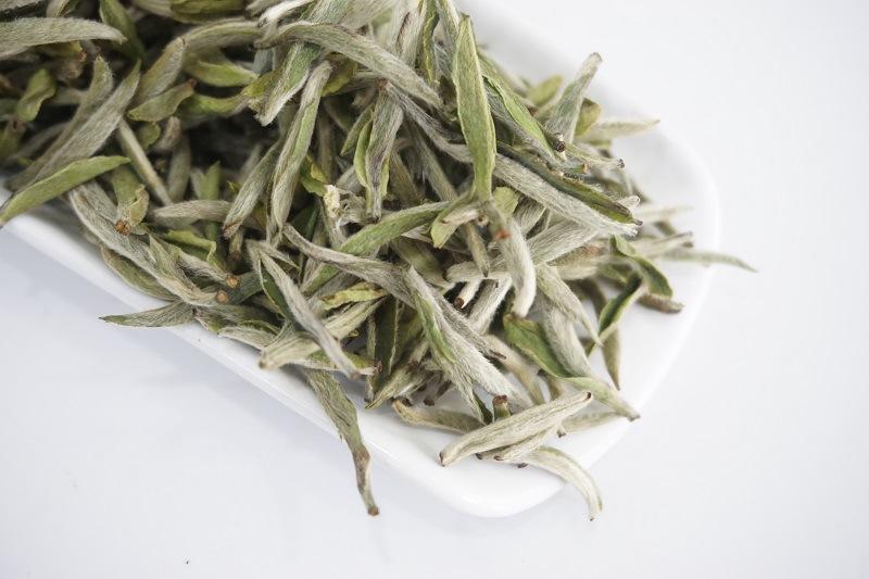 老白茶和陈年生普,哪个更具有收藏价值呢?