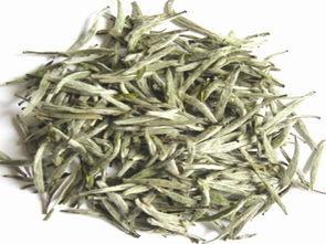 寿眉白茶的产地—福建福鼎