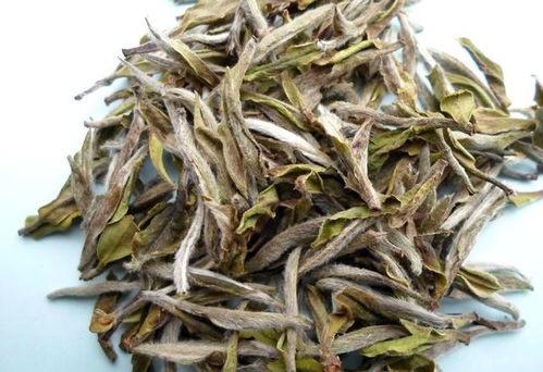 福鼎白茶有的四大产区,你都有听说过吗?