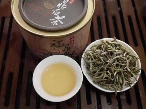 政和白茶和福鼎白茶之间,最大的区别是在哪里?