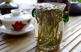 不适合喝寿眉白茶,都有哪些?
