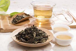 寿宁白茶和福鼎白茶对比,它们区别在哪里?