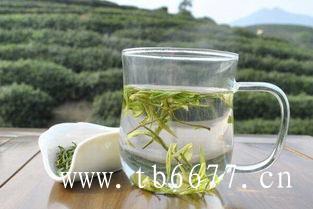 8种养生功效明显的白牡丹茶!