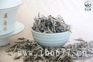 安吉白茶和福鼎白茶,它们的区别在哪里开始的?