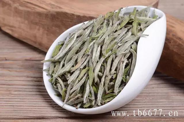 安吉白茶、福鼎白茶、政和白茶、月光白茶,这些茶的区别在哪里?