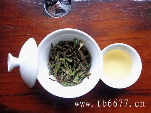 喝福鼎白茶,有这些好处!