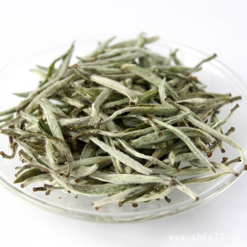 云南白茶,能喝吗?