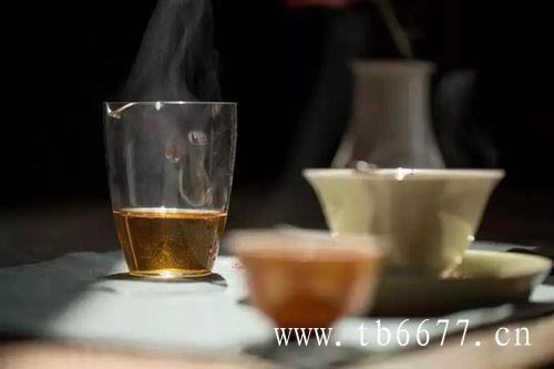 老白茶,要这样煮才好喝!