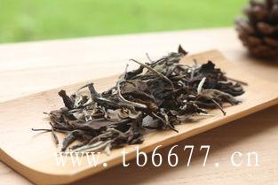 喝福鼎白茶的禁忌,你喝对白茶了吗?
