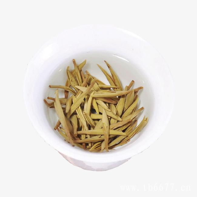 老白茶与新白茶的区别,你知道有那些吗?